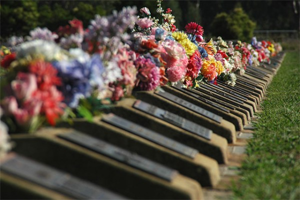 Benalla Cemetery, The Lawn